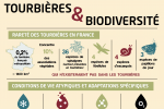 Infographie zones humides 2020